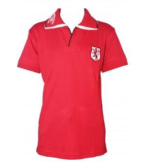Dia Boys Plain Striped Cotton T Shirt (D.Stawberry, Pack of 1) - 0698